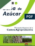 agroeconomia_canaazucar.pdf