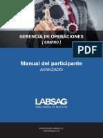 manualsimproAVANZADO.pdf