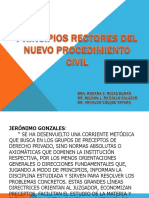 1.- PRINCIPIOS RECTORES DEL NUEVO PROCEDIMIENTO CIVIL.pptx