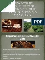 Proyecto Presupuesto Cafe 2014