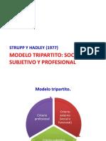 Modelo Tripartito