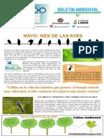 BOLETIN N. Mayo- Mes de Las Aves
