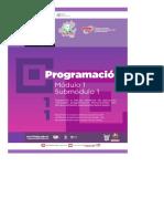 DocGo.org-Guía Formativa. PROGRAMACION 11. CECyTEH 2012 Gobierno Hidalgo