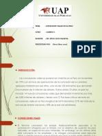 Diapo de conseciones en el peru.pptx