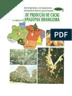 sistema producao cacau.pdf