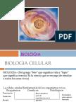 BIOLOGIA PROPEDEUTICO
