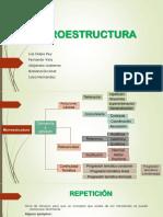 microestructuradassa-1