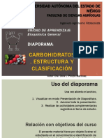 Carbohidratos.pdf