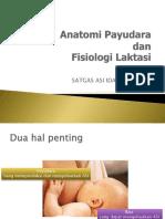 Anatomidan Fisiologi.ppt