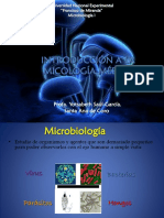 introduccionmicologia10-170326204747