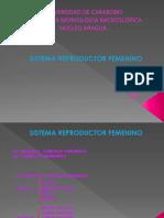 Clase Sistema Reproductor Femenino 1