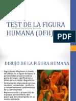 IPA Figura Humana