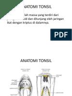 Abses Peritonsil B