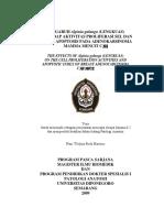 tinjauan lengkuas.pdf