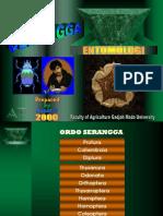 Suputa_ugm-2000 Ordo Serangga