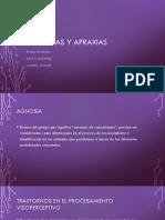 agnosiasyapraxias-170523214654.pptx