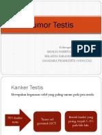 PPT Tumor Testis Kel 2