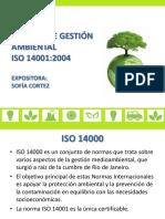 SISTEMA DE GESTIÓN AMBIENTAL.pdf
