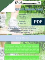 Cedera Pergelangan Kaki Indri Fix