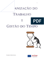 manual_organiz_tempo.pdf