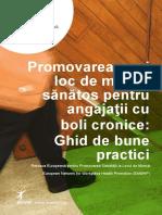 Ghid de Bune Practici Ptr Angajati Cu Boli Cronice