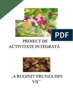 Proiect de Activitate Integrată Gabi