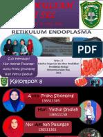 retikulumendoplasma-151129030717-lva1-app6892.pptx