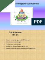 286569875 Program Gizi Indonesia