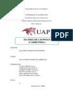 Matriz de Leopold Carreteras (1)