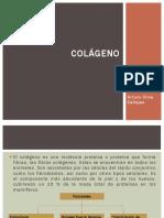 COLAGENO perio.pptx
