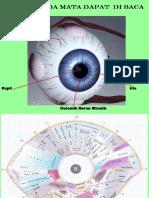 scleralogy Halimah.pptx