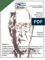 Citando Chomsky