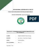 DETERMINACION DE LA DENSIDAD DEL AGUA MEDIANTE EL USO DEL PICNÓMETRO.docx