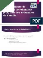 Procedimiento de Violencia Intrafamiliar (VIF) Ante (2)