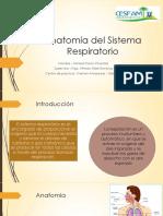 Sistema Respiratorio Dinamica y Mecanica
