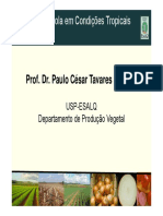 AulaCebola_Hortica 2012.pdf