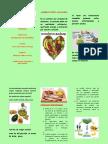 Alimentacion Responsable y Saludable