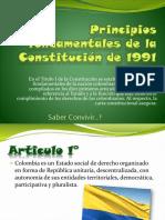 principiosfundamentalesdelaconstitucinde1991.pptx