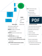 Mapa Conceptual Enfoque Investigación Cualitativa