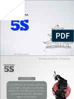 programa5s-140316210327-phpapp02.pdf