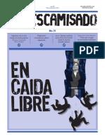 Descamisado21 Web