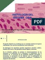 Sistema Oral