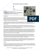 pelargoniums_fact.pdf