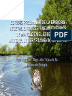 documents.tips_algas-de-manglar-de-jaltepeque.pdf