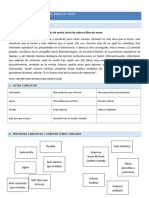 creacion_mapa_conceptual.pdf