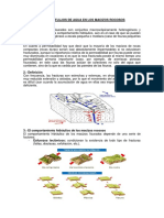 Sesi_n_6_Flujos_de_agua_en_los_macizos_rocosos.pdf
