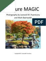 Picture MAGIC.pdf