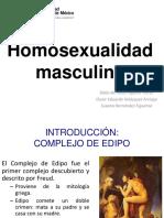 Homosexualidad masculina