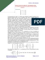 Problemas Resueltos de Matrices y Determinantes