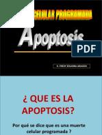 149787863-APOPTOSIS-DIAPOSITIVAS-2011-pptx.pptx